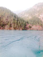九寨溝「熊貓海」的湖面上結成薄冰。(2004年資料圖片)