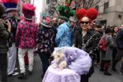 【復活節花帽巡遊——紐約】部分民眾帶同寵物同行。(法新社)