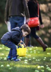 【復活節尋蛋活動——溫哥華】小朋友在草地上撿拾復活蛋。(新華社)
