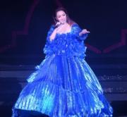 另一襲藍色晚裝裙。