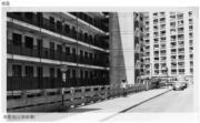 華富道(近華樂樓)(香港政府檔案處網站截圖)