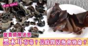 黑木耳篇1:黑木耳有毒?長時間浸泡可致命?營養師提醒:食前浸2小時已夠