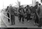大埔廣福道近普益街,攝於1974年。(香港政府檔案處網站圖片)