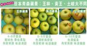 【王林蘋果有真假】日本青森蘋果:王林、黃王、土岐大不同!水果檔主提醒:留意不同品種當造期