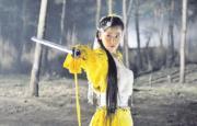 2008年電視劇《書劍恩仇錄》:周勵淇飾演霍青桐(劇照)