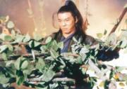 1993年電影《倚天屠龍記之魔教教主》:李連杰飾演張無忌(劇照)