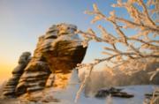 2018年1月,內蒙古克什克騰世界地質公園的霧淞(新華社)