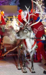 【世界各地迎聖誕】芬蘭北部Lapland的Santa's Village。圖片攝於2018年12月23日。(新華社)