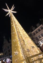 【世界各地迎聖誕】丹麥哥本哈根的聖誕樹。圖片攝於2018年11月25日。(黃廷希攝)