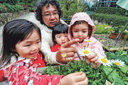 幼兒教育﹕林村教室 學生捉蟲游水 活在大自然  瑞吉歐學習法:就地取材