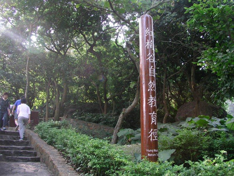1小時輕鬆行山3路線:沙田·西貢·荃灣