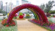 【香港花卉展覽2019】「童話世界」的「彩虹隧道」(陳翠美攝)
