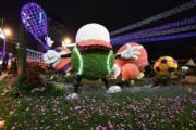 【香港花卉展覽2019】花展燈光匯演(政府新聞處)