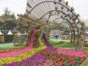 【香港花卉展覽2018】浪淘花園(丘萃瑩攝)