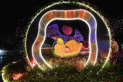 【香港花卉展覽2018】展品「童‧心‧世界」夜景(政府新聞網圖片)