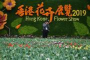 【香港花卉展覽2019】(新華社)