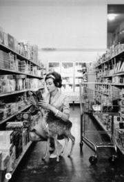 【Audrey Hepburn相展】1958年,柯德莉夏萍帶寵物小鹿Ip到在家附近的Gelson's Market購物。(Bob Willoughby攝/圖片由F11 Foto Museum提供)