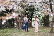【世界各地賞櫻花】美國華盛頓櫻花盛開,粉紅色櫻花如雲似霞。(新華社,攝於2019年4月7日)
