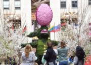 【復活節x復活蛋】紐約洛克菲勒中心(Rockefeller Center)擺放巨型復活兔和復活蛋,十分搶眼。(法新社,攝於2017年)