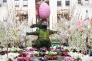 【復活節x復活蛋】在紐約洛克菲勒中心(Rockefeller Center)佈置成復活節花園,中央放置以植物製成的巨型復活兔,伴有巨型彩色復活蛋及花卉,十分搶眼。(法新社,攝於2017年)