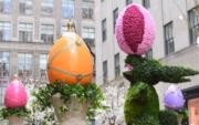 【復活節x復活蛋】紐約洛克菲勒中心(Rockefeller Center)(法新社,攝於2017年)