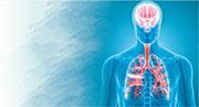 肺癌腦轉移 多方位治療 保生活質素