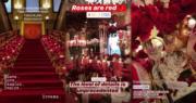 婚宴以紅色為主調,擺滿紅玫瑰,非常浪漫﹗(網上圖片、片段截圖 / 明報製圖)