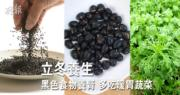 【立冬·二十四節氣】立冬飲食貼士:多吃黑色食物養腎 茼蒿芥蘭助暖胃
