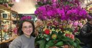 旺角花墟買年花:蘭花「大豹斑」「藏寶圖」熱賣 年輕家庭愛「錦鏽光芒」【短片】
