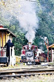 墨爾本童話之旅  坐蒸汽火車 聽木頭人講古