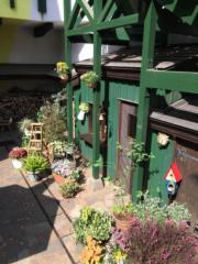 小花園(黃廷希攝,圖片攝於2017年4月)