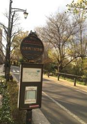 沿路的車站牌示印有龍貓圖案。(黃廷希攝,圖片攝於2017年4月)