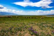 【世界自然遺產——中國】新疆哈密天山景區(新華社)