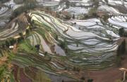 【世界文化遺產——中國】雲南哈尼梯田規模宏大,僅核心區元陽縣境內就有17萬畝梯田。圖為2011年3月4日拍攝的雲南元陽梯田。(新華社)