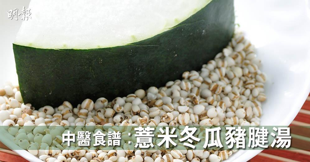 中醫湯水食譜:薏米冬瓜豬腱湯 清解暑熱