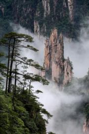2017年6月14日,安徽黃山雲海(新華社)