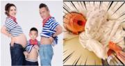 陳小春與應采兒的細仔HoHo張開口很可愛。(網上圖片/資料圖片/明報製圖)