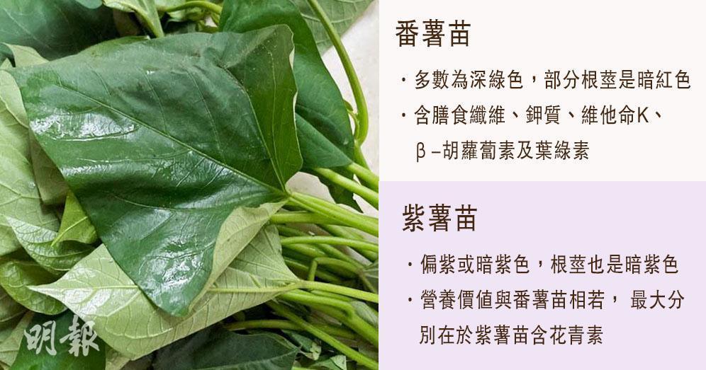番薯苗vs.紫薯苗 營養師:兩者營養相若 紫薯苗含抗氧化花青素