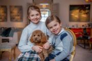 2021年2月23日,瑞典Princess Estelle小公主9歲生日,王室發放多張照片,其中一張為Princess Estelle(左)抱着小狗與弟弟Prince Oscar(右)合照。(Kungahuset facebook圖片)