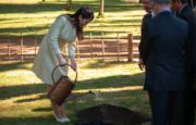 2018年7月18日,真子公主訪問巴西,為種植在里約植物園內日本庭園的幼苗澆水。(法新社)