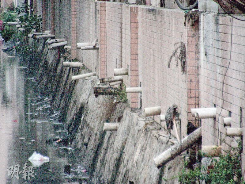 沙井共和涌兩邊的大廈,有許多巨型排水管對着河涌,廢水、污水直接排出,流入河中。(李泉攝)