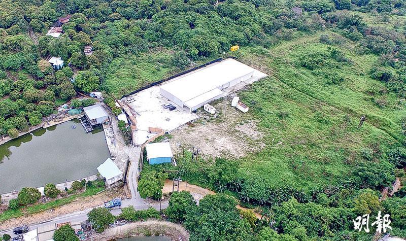 劉業強公司填塘建水耕場 規劃署被質疑縱容違規 劉:該地原為稻田