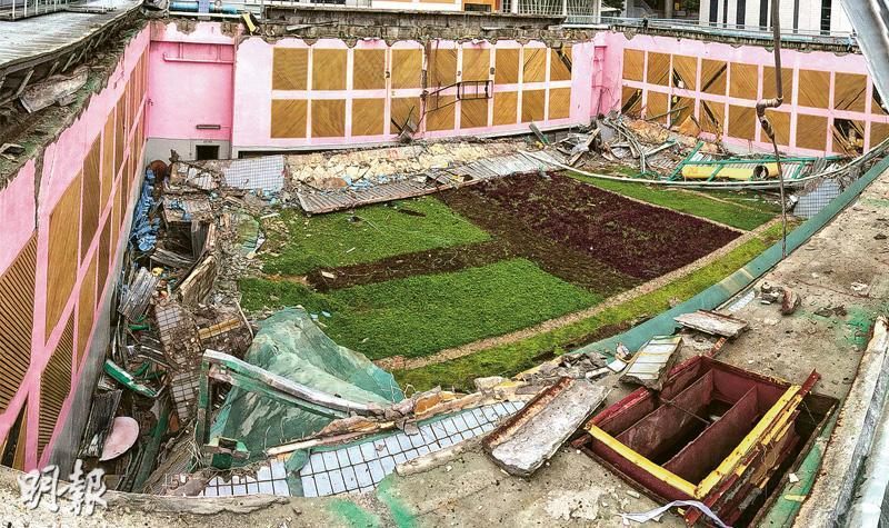 教局促中小學檢視綠化設施 學者指業界參差 有人直接倒泥種植
