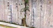 石崗高鐵救援處承托牆現裂縫 接縫長植物青苔 工程師促港鐵查原因