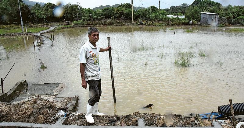 新界北暴雨淹農田  水深及胸  深圳排洪7分鐘後港府始公布  渠署:無新增水浸報告