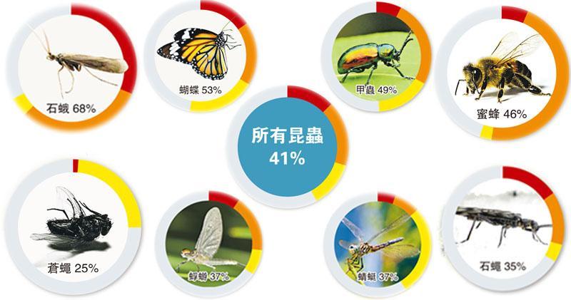 全球昆蟲大減  百年內恐滅絕  密集式農業暖化禍因  人類難獨善其身