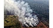 火噬「世界之肺」 點燃巴西外交風波 G7急商亞馬遜危機 博索納羅斥殖民者干政