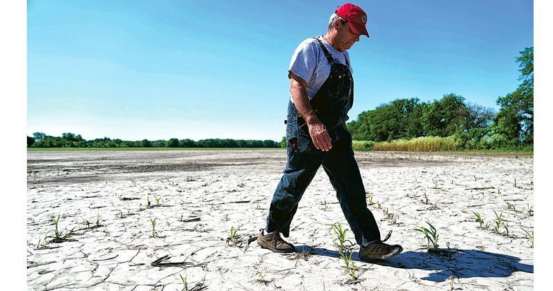 大購農產品撤加徵關稅 中方再對美釋善意