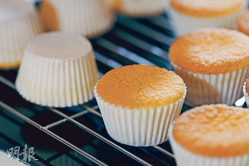 戚風蛋糕,海綿蛋糕,芝士蛋糕