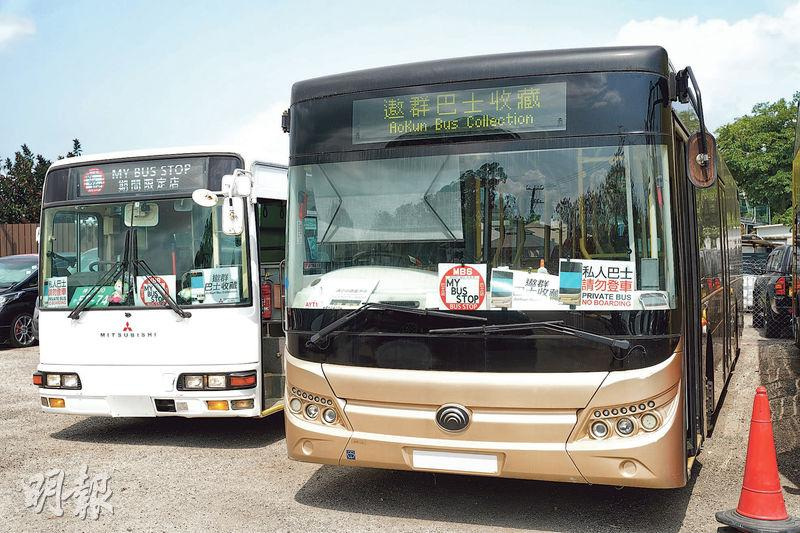錦上路循環線趁墟  重遇「再生」巴士